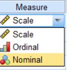 انواع مقیاس در SPSS