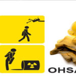 OHSAS 18001 سیستم مدیریت ایمنی شغلی