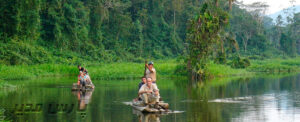 گردشگری طبیعت (اکوتوریسم)