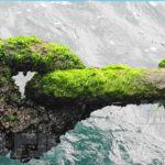 پرسشنامه مدیریت زنجیره تامین سبز