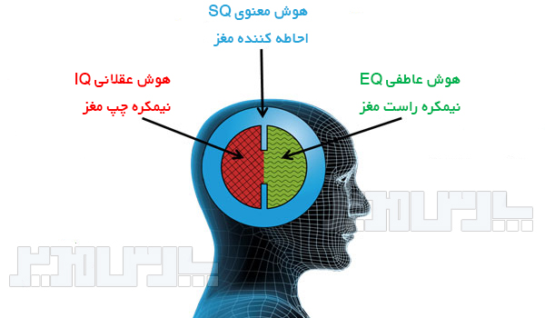 انواع هوش سازمانی