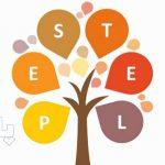 ارزیابی استراتژیک PESTEL